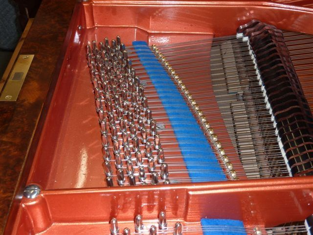 Piano tuner melbourne expert