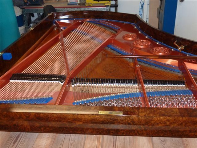 Piano tuning melbourne expert